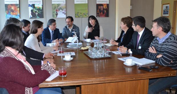 Lanzamiento del proyecto Apoyo en el Diseño de un Fondo Forestal Ambiental (FFA) como herramienta de la arquitectura financiera de la Estrategia Nacional de Cambio Climático y Recursos Vegetacionales de Chile.