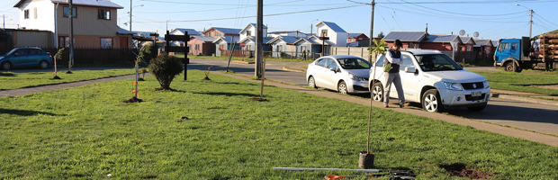 CONAF y municipio inauguran plaza en Frutillar