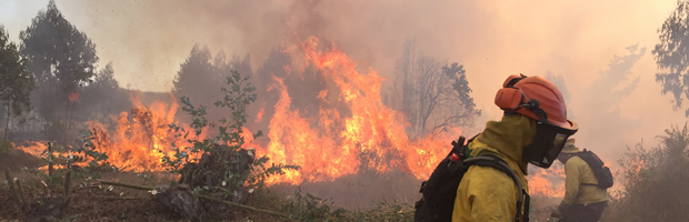 Sin avance permanece el incendio forestal que afecta a Curauma