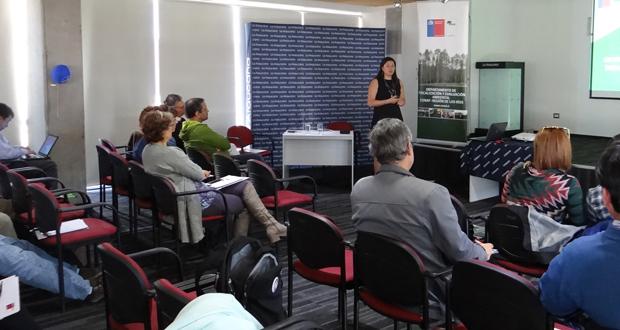 Primer seminario regulatorio de normativas forestales destinado a empresas inmobiliarias, constructoras y corredoras de propiedades de la región de Los Ríos.