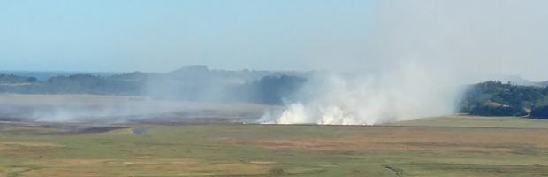 Peritos de CONAF investigan causas de incendio que afecta al humedal Tubul Raqui