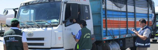 Mesa de fiscalización controla a camioneros de la ruta 5 en Vallenar
