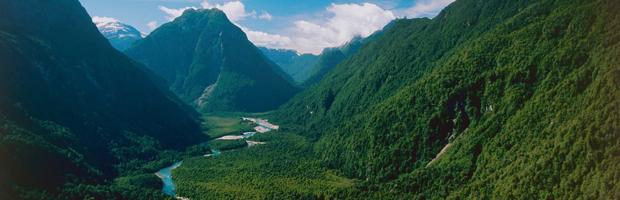 CONAF amplía plazos para concesiones ecoturísticas en parques nacionales Pumalín y Patagonia