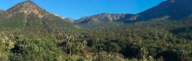 Situación de áreas silvestres protegidas del Estado