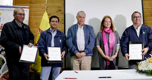 El lanzamiento se hizo en presencia de los agricultores beneficiarios de este proyecto en el Biobío y los equipos técnicos asociados a estos tres pilotos.