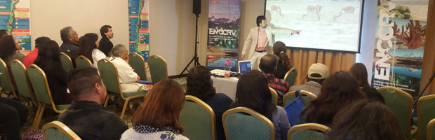 CONAF busca reimpulsar Modelo Intercultural Andino (MAIA)