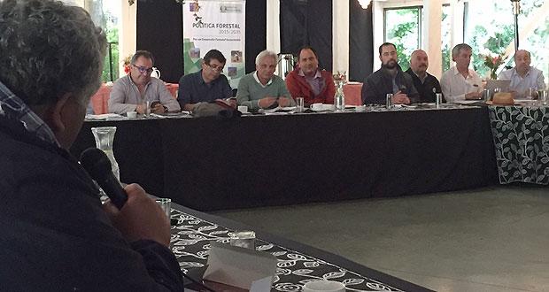 Sesión plenaria del Consejo de Política Forestal se realizó en su versión 18 en la ciudad de Villarrica.