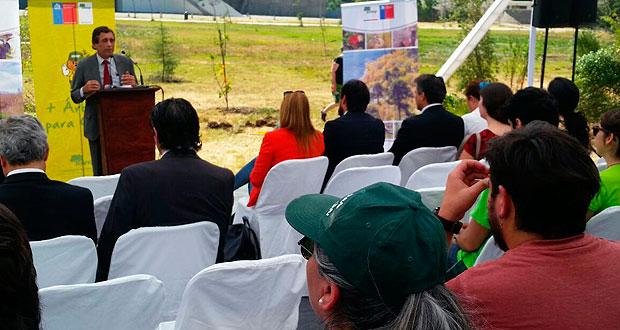 Sobre 1.360 especies, entre árboles nativos y exóticos y arbustos, fueron donadas por CONAF y plantadas en la ocasión por jóvenes voluntarios del INJUV.
