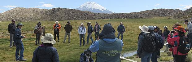 Curso de bosques de montaña y bofedales reunió a países andinos en Arica