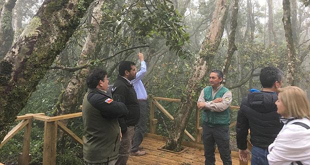 El proyecto, de 500 millones de pesos de inversión, provenientes de la Subsecretaría de Turismo, tiene como eje el desarrollo del turismo sustentable en áreas silvestres protegidas del Estado.