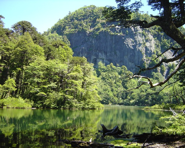 Parque Nacional Huerquehue.