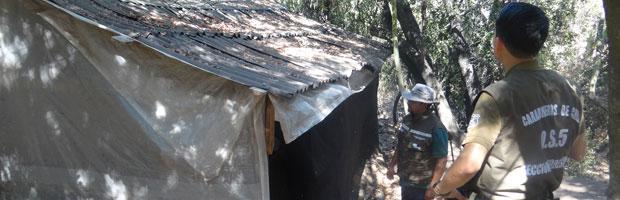 Desinstalan campamento ilegal para extracción de semillas de palma en La Campana