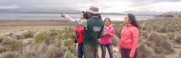 CONAF establece cierre de áreas silvestres protegidas de Arica y Parinacota