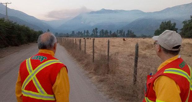 Más de 95.000 litros de agua y cerca de 200 personas en terreno es el despliegue efectuado por CONAF y los diversos organismos colaboradores en el combate del incendio forestal Los Arenales.