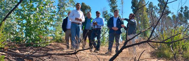 Director ejecutivo de CONAF visita predios afectados por la tormenta de fuego