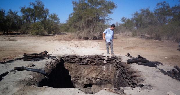El hallazgo se produjo al interior de un predio en el sector Santa Ana, donde además de la tala de árboles, personal de CONAF constató la existencia de un horno para la producción de carbón.