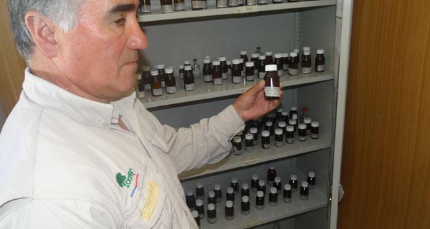 """El nuevo centro de investigación científica """"Carl Johan Fredrik Skottsberg"""" contiene actualmente 51 especies arbóreas, arbustivas, herbáceas y helechos."""