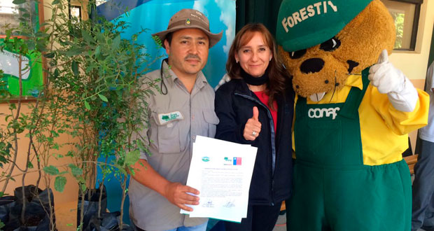 La comunidad escolar se propuso un nuevo desafío: reforestar con especies nativas 10 mil metros cuadrados del patio institucional, donde antes predominaban los eucaliptos.