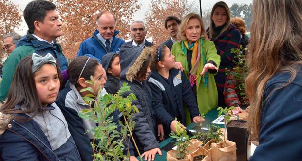 Un taller educativo con las etapas de crecimiento de un árbol y una plantación simbólica en dependencias del Museo Interactivo Mirador (MIM) fueron las acciones desarrolladas.