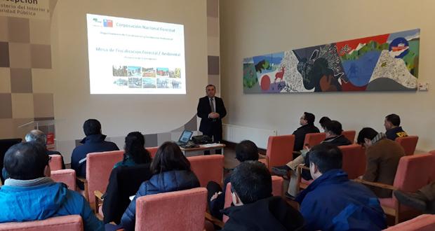 El encuentro estuvo encabezado por el Gobernador de Concepción, Robert Contreras, y el director regional de CONAF, Juan Carlo Hinojosa, y en él participaron representantes del Servicio de Impuestos Internos (SII), PDI, de las seremi de Energía y Medioambiente, además de inspectores municipales.