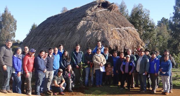 En carretas con bueyes, carretillas y camionetas llegaron a recoger las 7800 plantas de nativos que entregó CONAF en la Ruka Rayén Mapu.
