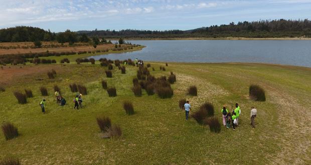 Estudiantes con discapacidad intelectual retiraron 2 metros cúbicos de basura desde el sector Bajo La Isla de la Reserva Nacional Lago Peñuelas.