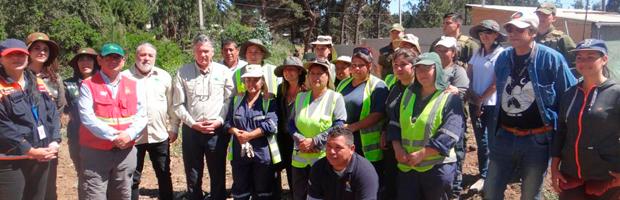 Más de 31 mil kilos de material combustible forestal se han retirado en Valparaíso