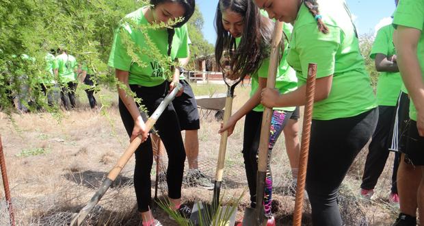 """La actividad se enmarcó en el taller de educación ambiental """"Cultiva tu identidad"""", que desarrollan en conjunto la Corporación Nacional Forestal (CONAF) y el Instituto Nacional de la Juventud (Injuv) a lo largo del país."""
