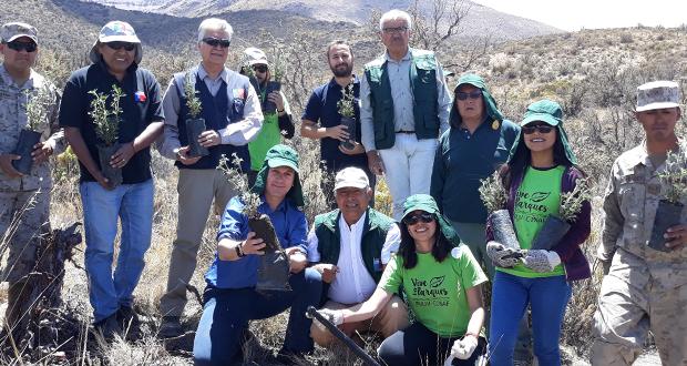 Protagonistas de la jornada fue la comunidad local, el programa Vive Tus Parques del convenio CONAF-INJUV, así como el voluntariado juvenil de la Facultad de Agronomía de la Universidad de Tarapacá y el Ejército.