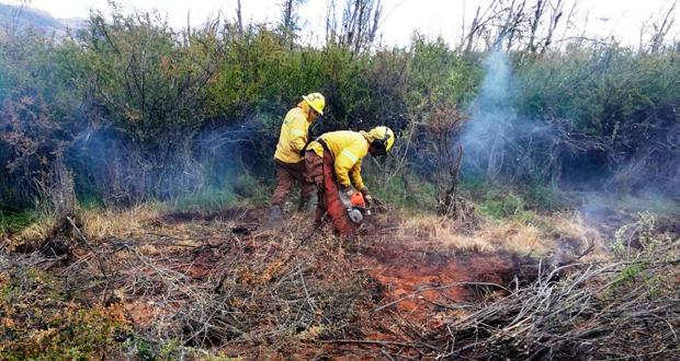 A la fecha el incendio de Cochrane registra una superficie quemada de 15.145 hectáreas.