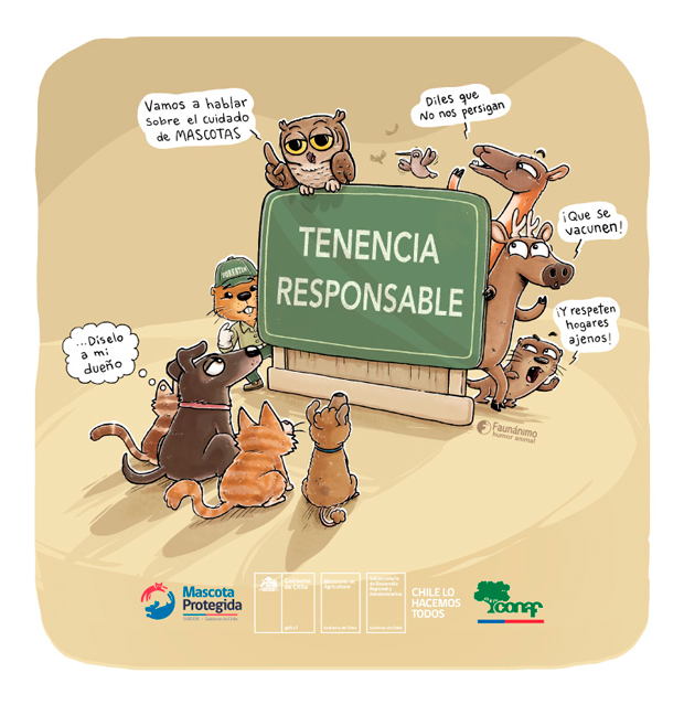 Campaña por redes sociales sobre la importancia de la tenencia responsable de las mascotas.