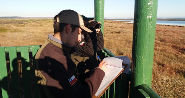 Censo de aves realizado a principios de este mes en Reserva Nacional El Yali.