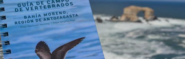 """La actividad se enmarca en la celebración del Día Mundial de la Naturaleza. Se entregarán 300 ejemplares de la """"Guía de Campo de Vertebrados, Bahía Moreno""""."""