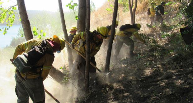 En la actividad se trabajó fuertemente para eliminar escombros y basura. Además se realizó un trabajo de poda y cortacombustible vegetal de matorrales y especies arbóreas.