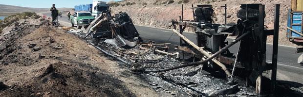 CONAF hace llamado a conductores de ruta 11Ch por seguridad humana y ambiental
