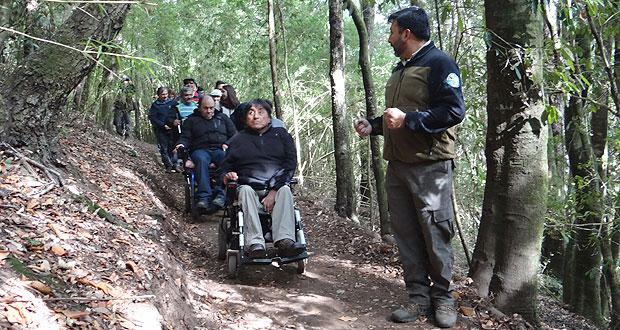 La caminata por el único sendero inclusivo natural de la región de La Araucanía, que se ubica en el costado del estacionamiento del casino, la hicieron personas en situación de discapacidad física y visual.
