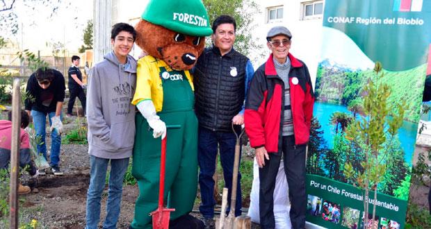 Tras la entrega de árboles por parte de la Corporación, los alumnos iniciaron el proceso de plantación, actividad que estuvo encabezada por el Director Ejecutivo de CONAF, José Manuel Rebolledo.