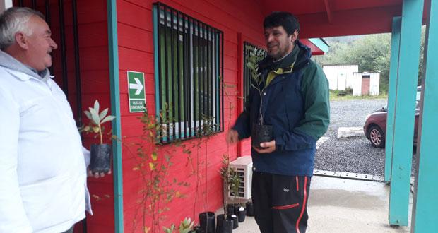 Entre las especies entregadas se encuentran pitao, canelo, arrayán y roble, entre otras, las cuales serán plantadas por los propios alumnos.