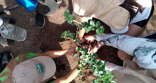 """Los alumnos, de entre 15 y 17 años, realizaron este trabajo voluntario en el área de restauración ecológica denominada """"Bifurcación La Buitrera""""."""