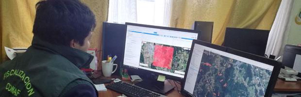 CONAF presentará sistema de monitoreo forestal en EE. UU.