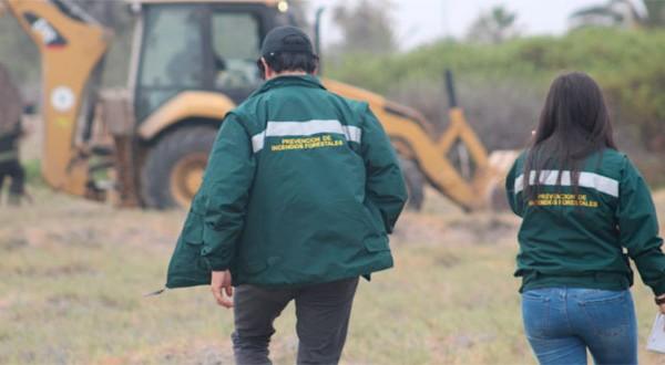 Al lugar, al que nuevamente debió concurrir Bomberos, llegó también el equipo de la Unidad de Prevención de Incendios Forestales de CONAF para realizar la evaluación.