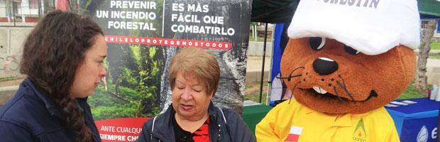 CONAF llama a prevenir incendios forestales en el cerro Los Placeres de Valparaíso