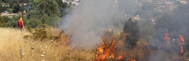 Incendios forestales en el Biobío aumentaron en un 31% de acuerdo a balance final