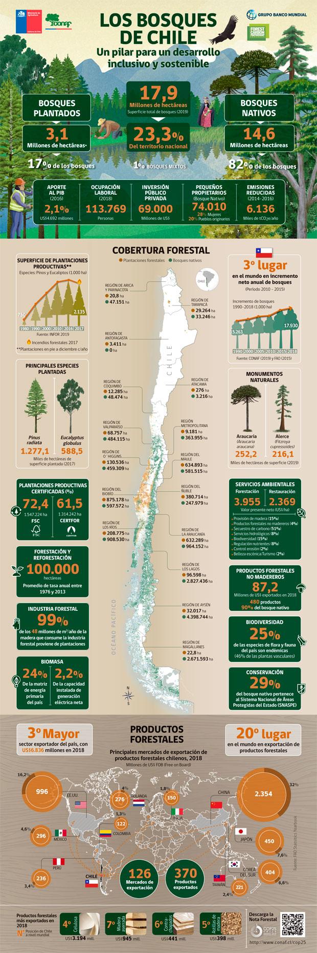 Infografia Los Bosques de Chile