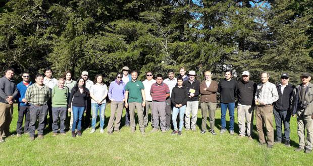 La actividad contó con la presencia profesionales de CONAF Los Ríos de Valdivia y el Ranco, consultores y extensionistas forestales, socios de APROBOSQUE, socios del Colegio de Ingenieros Forestales (CIFAG), INFOR, docentes de la Universidad Austral (UACH) y medianos propietarios.