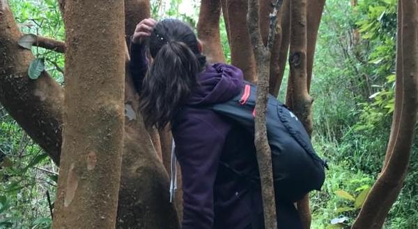 La instancia fue dirigida a todas y todos, especialmente a guardaparques, para seguir perfeccionando esta técnica en cómo guiar experiencias de bienestar y conexión con la naturaleza.