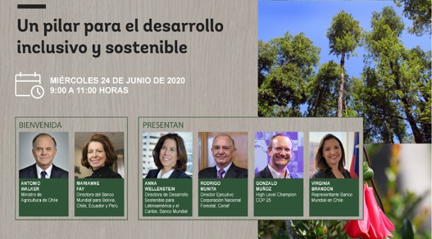 Seminario 'Los Bosques de Chile: un pilar para el desarrollo inclusivo y sostenible'