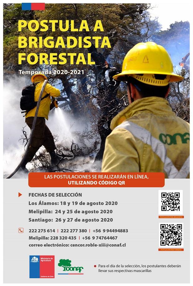 afiche-brigadistas-forestalesRM620
