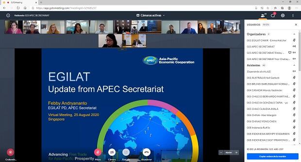 XVIII Reunión del Grupo de Expertos Sobre Tala Ilegal y Comercio Asociado (EGILAT 18 por sus siglas inglés).