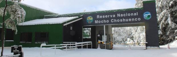 CONAF cierra de forma parcial Parque Nacional Villarrica Sur y Reserva Nacional Mocho Choshuenco